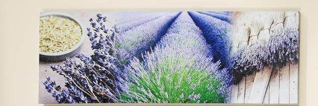 Bild wandbild lavendel lila blau frankreich leinwand for Wanddeko lila