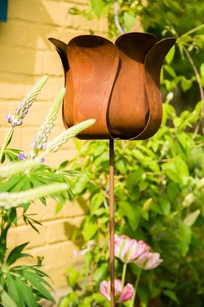 Gartenstecker rankstab tulpe rost for Rost gartenstecker