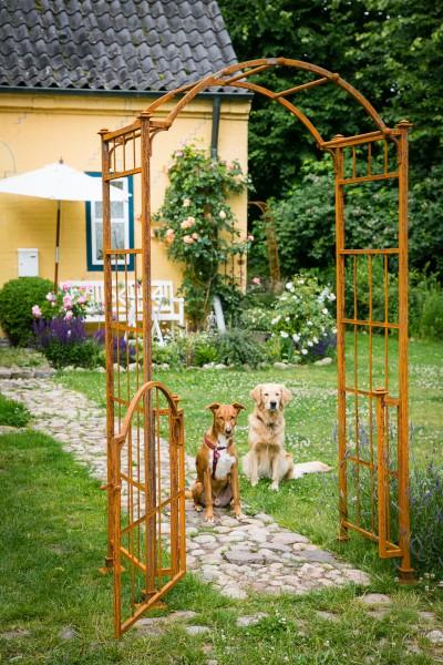 rosenbogen metall classic mit tor t r rost. Black Bedroom Furniture Sets. Home Design Ideas